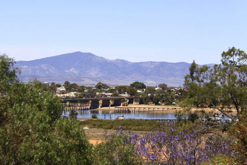 Jacaranda_Time_Port_Augusta